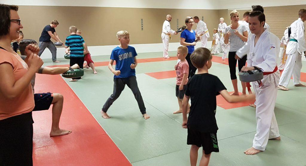 Perhetaekwondo